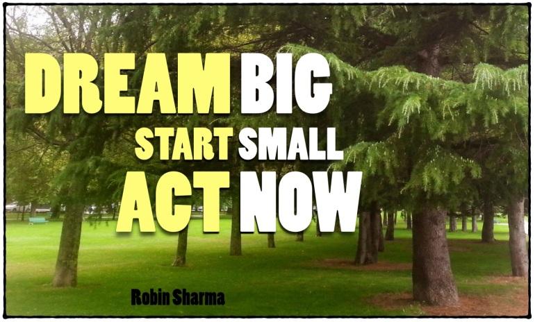 Soñar a lo grande, empezar poco a poco, actuar ahora. Robin Sharma
