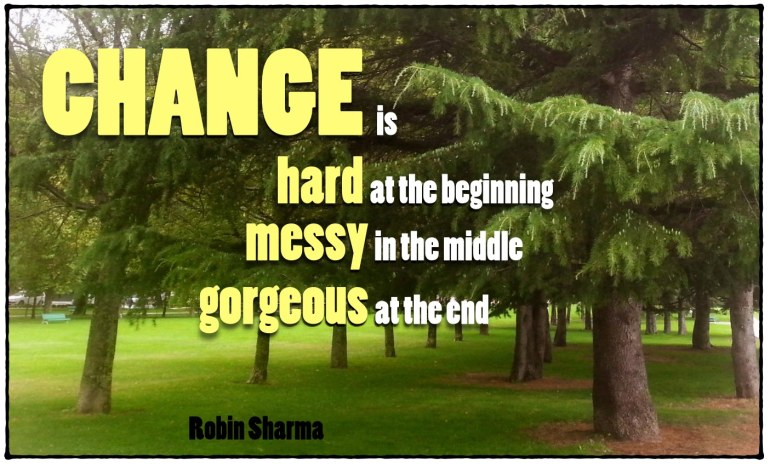El cambio es difícil al principio, desordenado en el medio y precioso al final. Robin Sharma