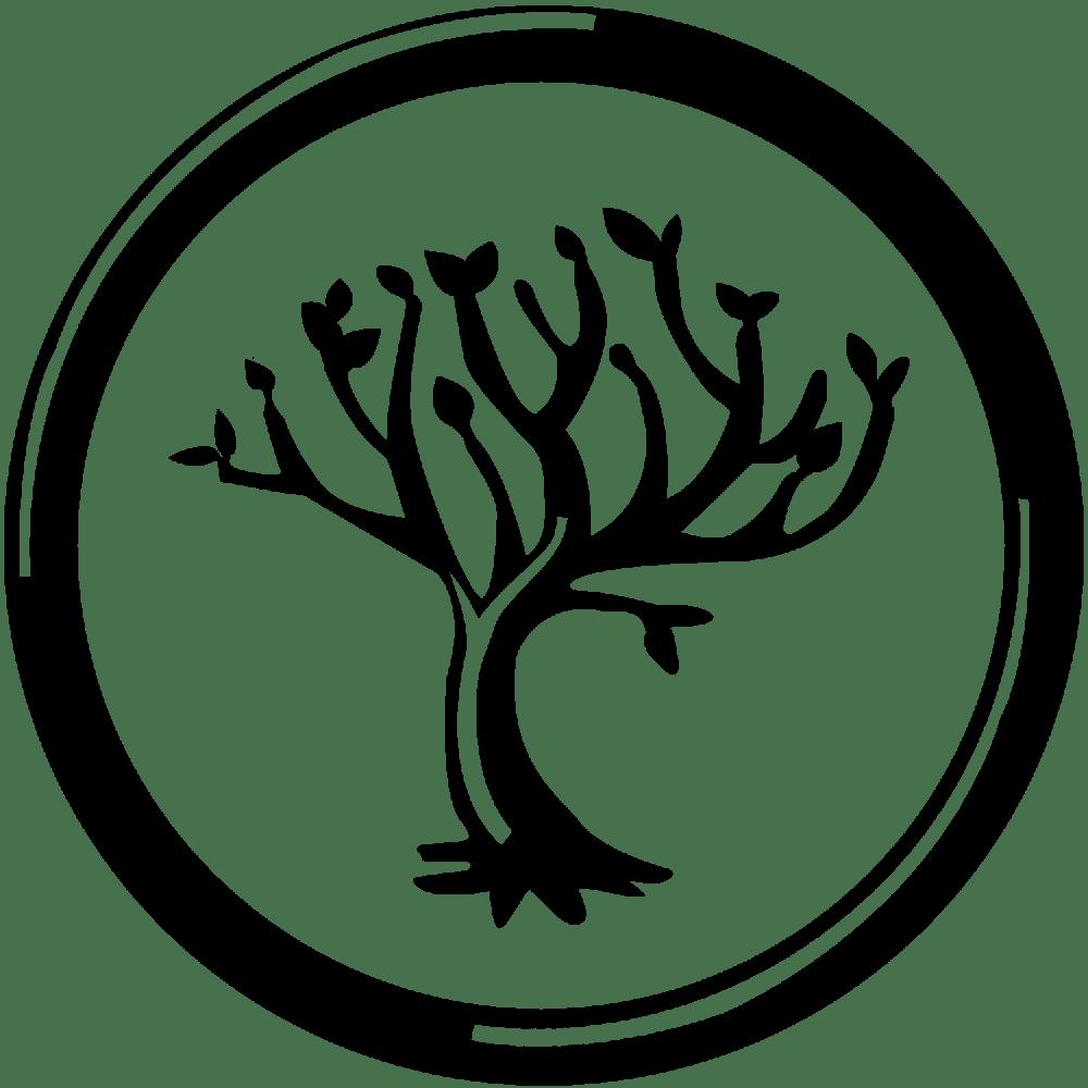 Ser Divergentes (3/6)