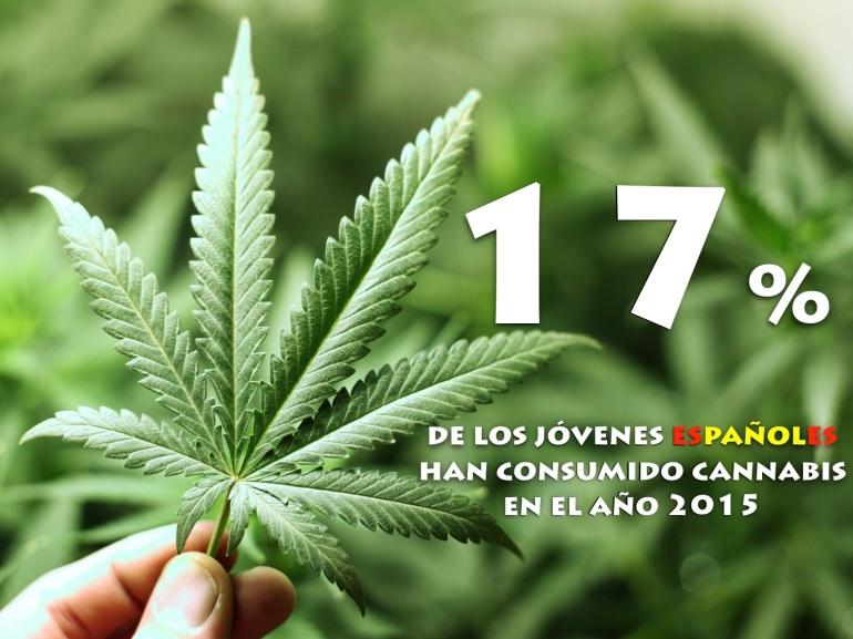 incremento del consumo de cannabis